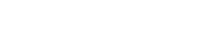 Netlogic Solutions, Inc. Connecting Logic With Technology